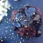 Σοκολατένια - Mini κεκάκια χωρίς αυγά και βούτυρο